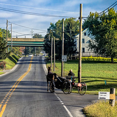 Au pays Amish (Lucille-bs) Tags: amérique etatsunis usa pennsylvanie paysamish amish lancaster pont buggy cheval route pelouse vert comtédelancaster carriole maison architecture canonflickraward pennsylvania