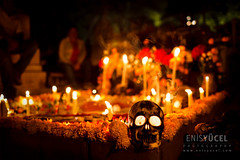 Marigolds and Skul (Moments2Memories) Tags: canon5dmarkii canonef35mmf14lusm colorimage latinamerika meksika mexican mexico oaxaca southamerica ancestor candles cemetery color colors cultural culture dayofthedead dayofthedeads diadelamuertos diadelosmuertos documentary documentaryphotography festival folk graveyard kid marigold mexicanculture mexicantradition mourning night nightphotography people places red relative skeleton skull stock stockphotography tradition traditional travel travelphotography