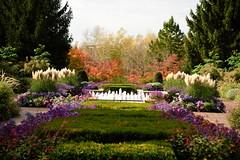 JJN_3228 (James J. Novotny) Tags: chicago conservatory botanical gardens garden flowers flower nikon d750 path paths skokie lagoons