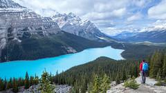 Peyto Lake | Banff National Park | Canada (fiston22) Tags: peytolake canada banffnationalpark mountains trekk trees adventure