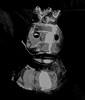 a ducky, darkly (muffett68 ☺☺) Tags: noir posterized ansh editingaphototolooklikeasketch