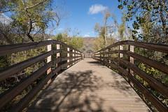 PEDB20161101-055.jpg (EricBier) Tags: 20161101otaysweetwaterrefuge hike gitzotripod footbridge photoouting category otaysweetwaterrefuge mountain springvalley 91978 infrastructure geological event implement place