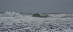 Seascape (Neil DeMaster) Tags: sea ocean waves crashingwaves oceanscape seascape nature massachusetts atlantic atlanticocean