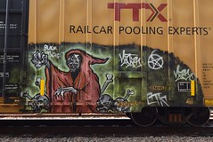 NATAS (TheGraffitiHunters) Tags: graffiti graff spray paint street art colorful freight train tracks benching benched boxcar natas grim reaper skull