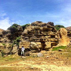 Maria Island. Fossil cliffs. M.