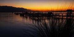 Here We Go Again (in Explore) (mimsjodi) Tags: sunrise indianriverlagoon titusvillefl veteransmemorialpark privatedock