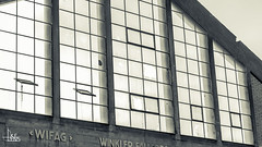 Wyleregg Selection (Ukelens) Tags: ukelens bern schweiz swiss switzerland suisse svizzera schatten shadow shadows lightroom light lights licht lichter lighteffects lichteffekt lighteffect lichteffekte wifag sunlight sonnenlicht street streetphotography blackandwhite schwarzweiss