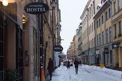 10112016-IMG_9167.jpg (thehikingzebra) Tags: neige stockholm sude