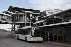 #7004 busways (Tim Attinger) Tags: 7004 busways