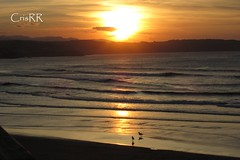 Carrera (cristinabovary) Tags: sunset sunsets ocaso ocasos puesta de sol playa playas beach beaches dog perro perros dogs asturias mar sea