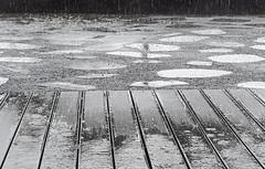 2016_reunion_45_stellamatutina (ingridkreuz) Tags: frankreich france outremer blackandwhite monochrome regen rain steg pftze tropfen muster pattern