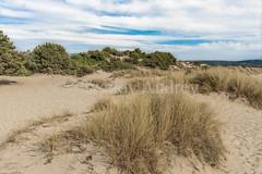 Dune (Ivanov Andrey) Tags: dune dunes sand wind grass hill hills bush bushes coast sea sky horizon cloud clouds blue yellow nature dry journey beach lagoon desert greece