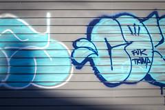 Fuk Trump (Rodosaw) Tags: documentation of culture chicago graffiti photography street art subculture lurrkgod fuk trump