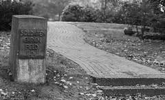 Ehrenfeld (wpt1967) Tags: 26112016 bielefeld canoneos6d eos60d friedhof sennefriedhof soldatengrber bw canon100mm graveyard sw wpt1967