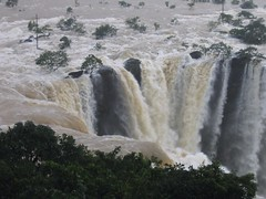 World Famous Jog Falls Photography By CHINMAYA M.RAO Set-1 (170)