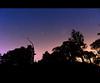 Starry Sky (Erik Nardini) Tags: longexposure sky night way stars landscape star landscapes countryside shots astro galaxy astrophotography astrofotografia astros milky campinas constellation galaxia milkyway nighscape morungaba joaquimegidio
