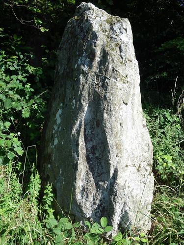 Le menhir dit « La Roche » près d'Uzel - Côtes-d'Armor - Juillet 2015 - 06