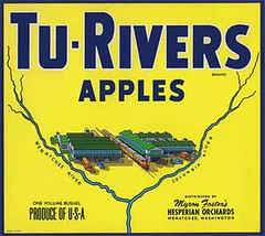 "Tu Rivers Yellow • <a style=""font-size:0.8em;"" href=""http://www.flickr.com/photos/136320455@N08/21283684350/"" target=""_blank"">View on Flickr</a>"