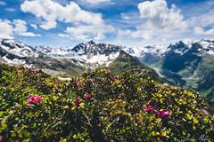Breitspitze Austria (Christian Mletzko) Tags: mountain blur alps austria tirol österreich nikon bokeh d750 20mm f18 partenen vorarlberg at paznaun afsnikkor20mm118ged