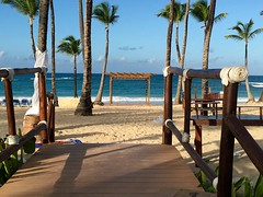 Everything's Excellent in Punta Cana! (Blend Interactive) Tags: birthday beach monkey dominicanrepublic dolphin flamingo developer palmtree puntacana excellencepuntacana blendinteractive