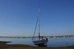 Blue Harbour. (Sunchild57 Photography. Taking a break.) Tags: coast harbour yacht merseaisland westmersea