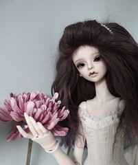 aserghjklô (michellebebe) Tags: doll bjd abjd dollleaves dollchateau