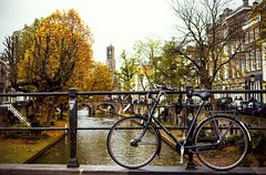 Inge Hoogendoorn (ingehoogendoorn) Tags: bike bikes dutchbikes dutchcity autumn herfst oudegracht utrecht iloveutrecht yellow yellowtree dom domtoren domtower fiets fietsen cityscape bicycle bicycles canal canals thenetherlands picturesque pittoresk