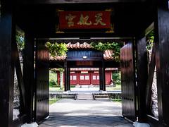 _1070674 (omaribernard) Tags: fav25 fav50 fav175 fav100 fav125 fav150 m43 lumix panasonic gx8 japan okinawa murasaki omaribernard mura