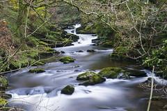 Rockford North Devon (Giuseppe Baldan) Tags: