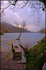 After the operation! (peterdouglas1) Tags: trees lakes llanberis snowdonia llynpadarn thattree