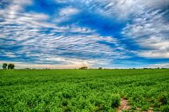Tarde nublada (Cristian Fotografia) Tags: santa argentina paisaje campo colonia fe hdr bossi