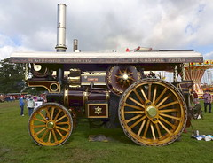 Showman's road locomotive 'Carry On' (Snapshooter46) Tags: bedfordshire steam carryon 2015 oldwarden roadlocomotive showmansengine steamandcountryfayre