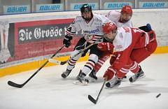 Junghaie vs. EV Landshut, 15.11.2015