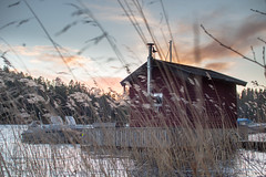 Varmdo Christmas (Rachel Elisabeth Jones) Tags: sea water reeds cabin sweden baltic scandinavia archipelago