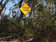 sound horn (Val in Sydney) Tags: muogamarra national park australia australie nsw road sign sound horn