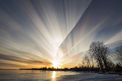 Contrail Trails (Matt Molloy) Tags: mattmolloy timelapse photography timestack photostack movement motion clouds streaks lines contrails sunset sky winter snow ice sun reflection trees lakeontario bath ontario canada landscape lovelife