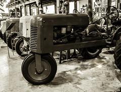 Farm Museum2 (Derek Walmsley) Tags: 2016 antiques fortlangley fortlangleyfarmmuseum museum farmequipment