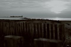 Mirando al castillo (ZAP.M) Tags: atarceder bn paisaje naturaleza nature sunset playa plage beach sanctipetri chiclana andaluca espaa zapm mpazdelcerro flickr nikon nikond5300
