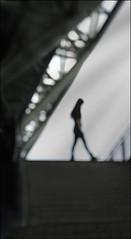 F_DSC4637-2-Nikon D300S-Nikkor 28-300mm-May Lee  (May-margy) Tags: maymargy   architecture  frame  handrail  stairs  streetviewphotographytaiwan  linesformandlightandshadows  mylensandmyimagination  naturalcoincidencethrumylens humaningeometry  blur  bokeh    taiwan repofchina
