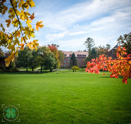 It felt like I hadn't been in Decorah since 1922.  What a beautiful tapestry of colors within the Luther College campus.  The commons in front of Preus Library, with Brandt Hall (freshman dorm 1990-91) in the background.  Decorah, Winneshiek County, Iowa,