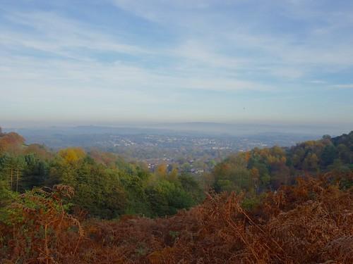 Autumnal Scene, Upper Cwmbran 31 October 2016