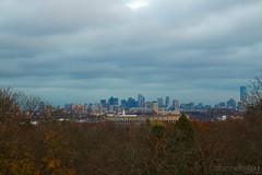 Skyline in the Trees (catherinehodges) Tags: suburbs boston massachusetts fall autumn november mtauburncemetery watertown