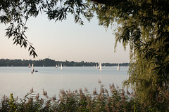 Sailboats on the Alster lake (Teelicht) Tags: ausenalster deutschland germany hamburg see segelboot lake sailingboat