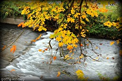 Fall at the pool.... (Garry's lens....) Tags: autumn beauty nature outdoors colors pretty beautiful river reflections colorful picmonkey