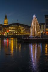 Weihnachten in Kiel (rahe.johannes) Tags: kiel blauestunde architektur weihnachtsbaum weihnachten beleuchtung weihnachtsbeleuchtung spiegelung rathaus stadt lichter
