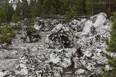 """Rocks along Clear Lake Trail • <a style=""""font-size:0.8em;"""" href=""""http://www.flickr.com/photos/63501323@N07/30646043011/"""" target=""""_blank"""">View on Flickr</a>"""