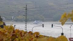 Rhein bei Oberwesel