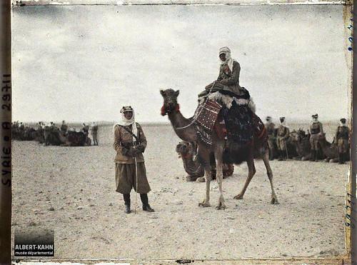 Syrie, Palmyre, Officiers français Méharis