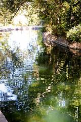 Alhambra river