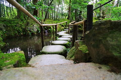 Path through water - Explored Nov 26th 2016!! (Davide C.77) Tags: asia giapoone japan path stones water pond park garden forest